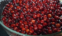 bright red cranberries in a bowl of water